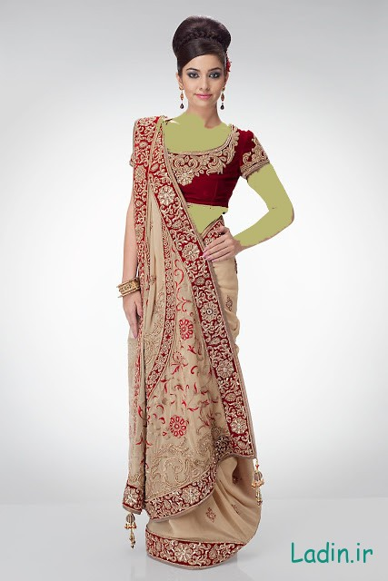 Bridal-Winter-Party-Wear-Sarees-2013-2014-2