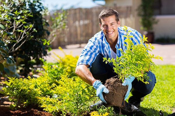 http://www.dreamstime.com/royalty-free-stock-image-young-man-gardening-happy-backyard-image40472786